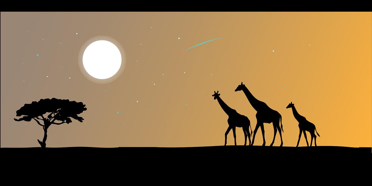 Giraffe2257780 1280 17674aef
