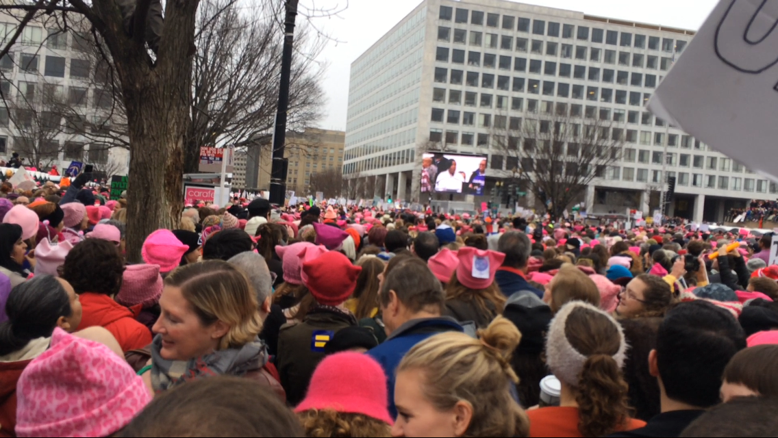 "Thousands of protestors wore ""pussyhats"" to Saturday's Women's March. (Taylor Swaak/ The Diamondback)"