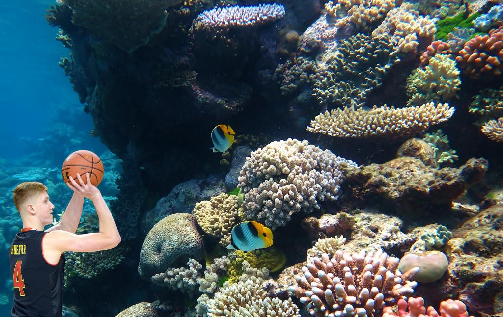 huerter great barrier reef