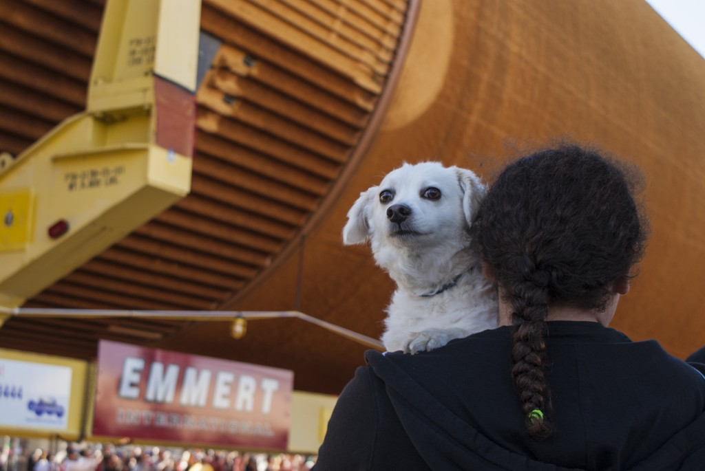 A pup takes part in the history-making moment as ET-94 enters the home stretch of travel to its new residence at the California Science Center. (Marisa Zocco / USC Annenberg Media)