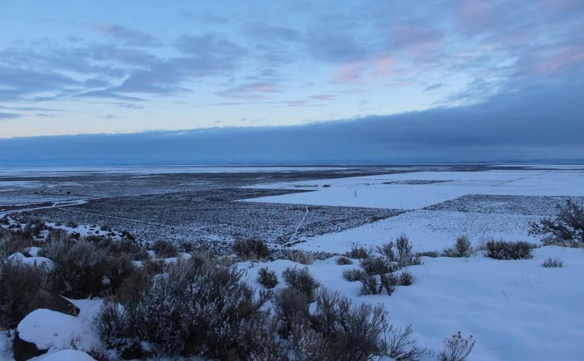 Audubon Society of Portland Joins Chorus of Environmentalists Decrying Ammon Bundy's Acquittal