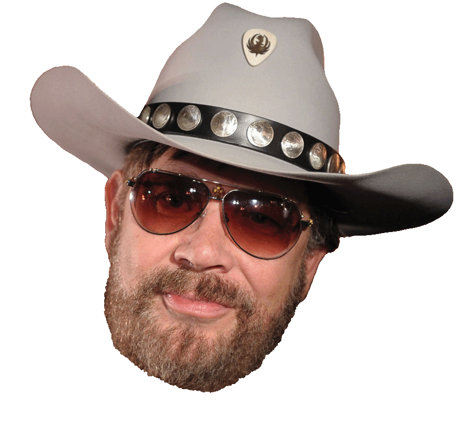Image result for hank williams jr