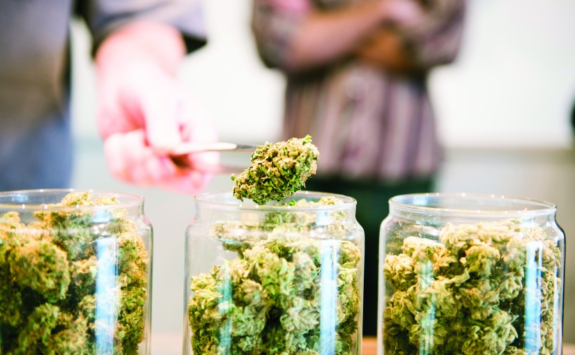 Top Cannabis Dispensaries Across Portland