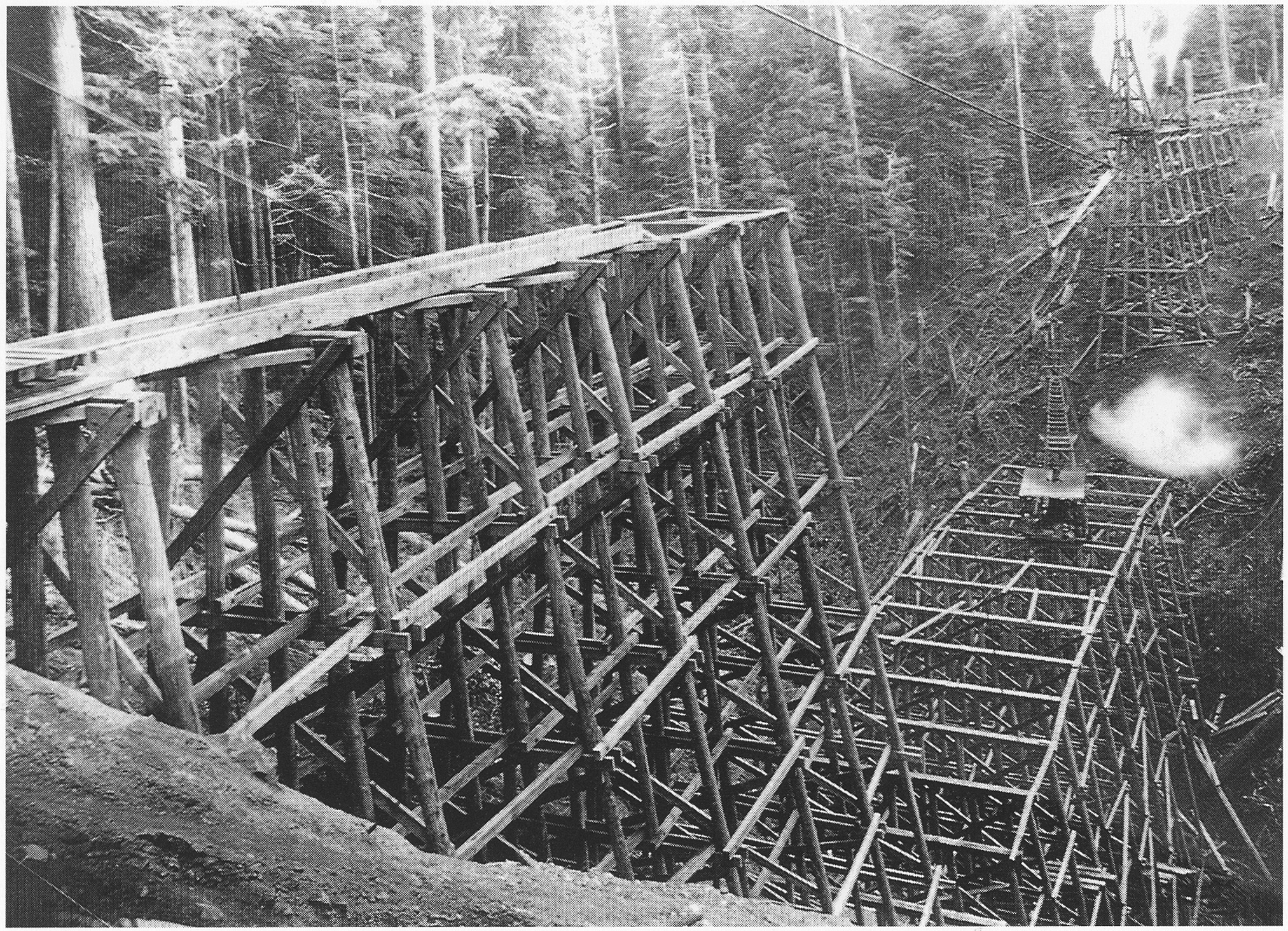 Workers finished building the Pacific Railway & Navigation line in 1911. One of the final projects was the Big Baldwin trestle—520 feet long and 167 feet high. (Tillamook Pioneer Museum Collection)
