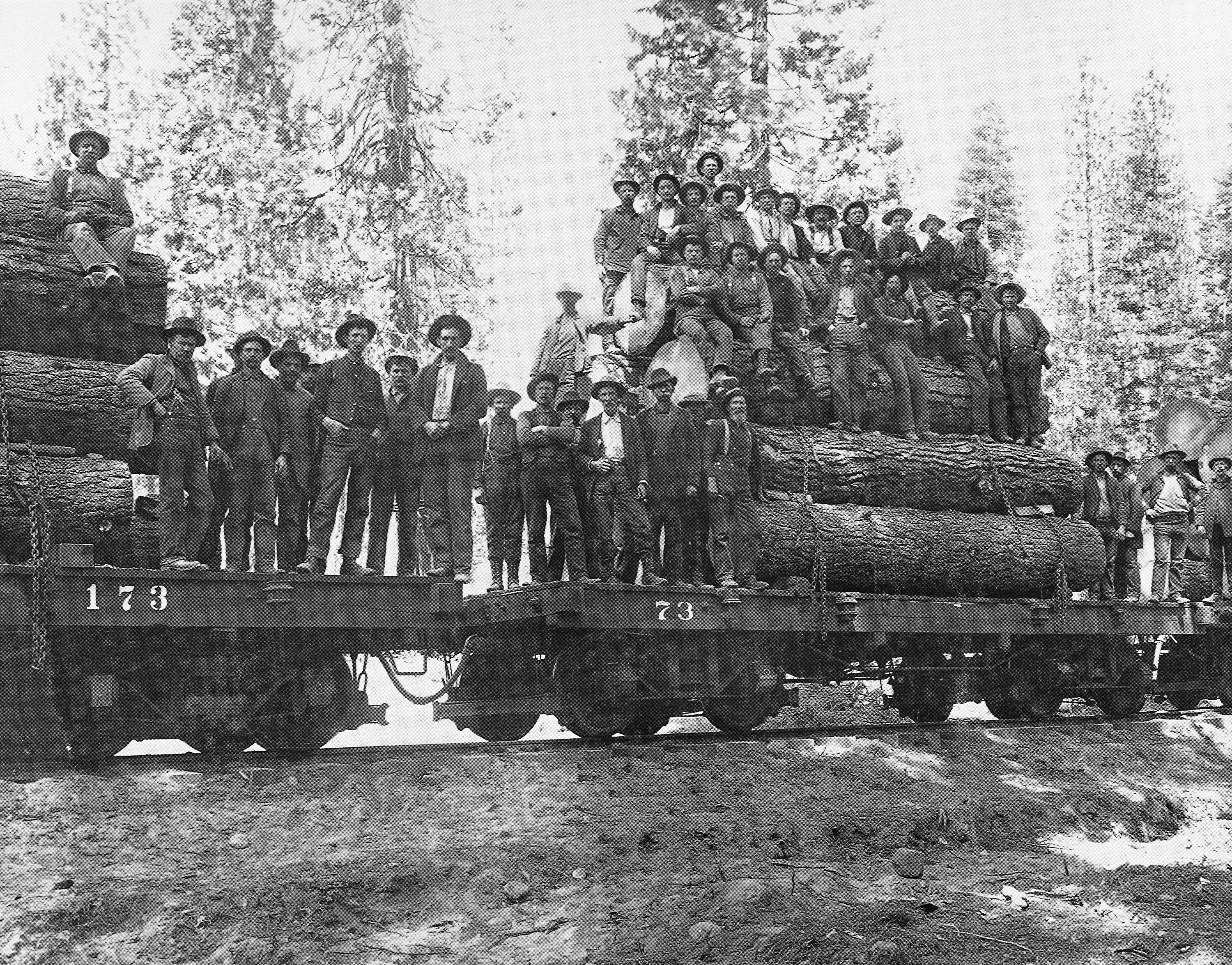 Workers pose in 1910 with first trainload of logs shipped on the PR&N line. Six years later, timber baron Coleman Wheeler was shipping as many as 14 carloads of logs a day out of the Coast Range. (Washington Country Historical Society)