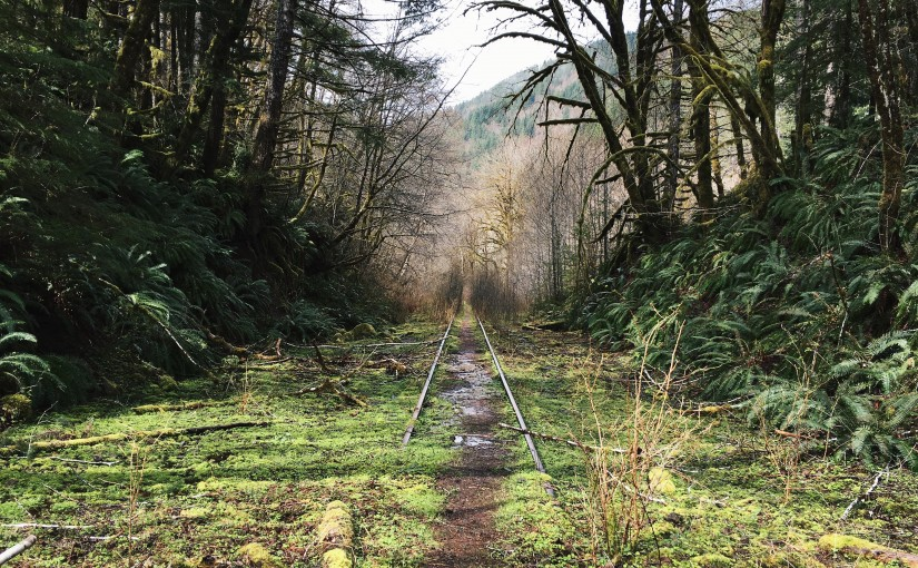 This Abandoned Railroad Could Become an Epic Trail From Portland's 'Burbs to the Sea