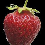Totem_Fruit1_strawberry
