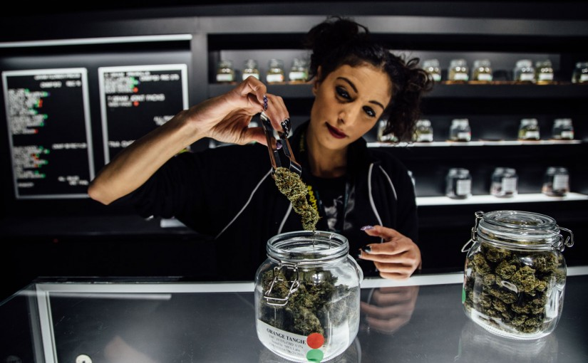 Here Are Four of Our Favorite New Pot Shops