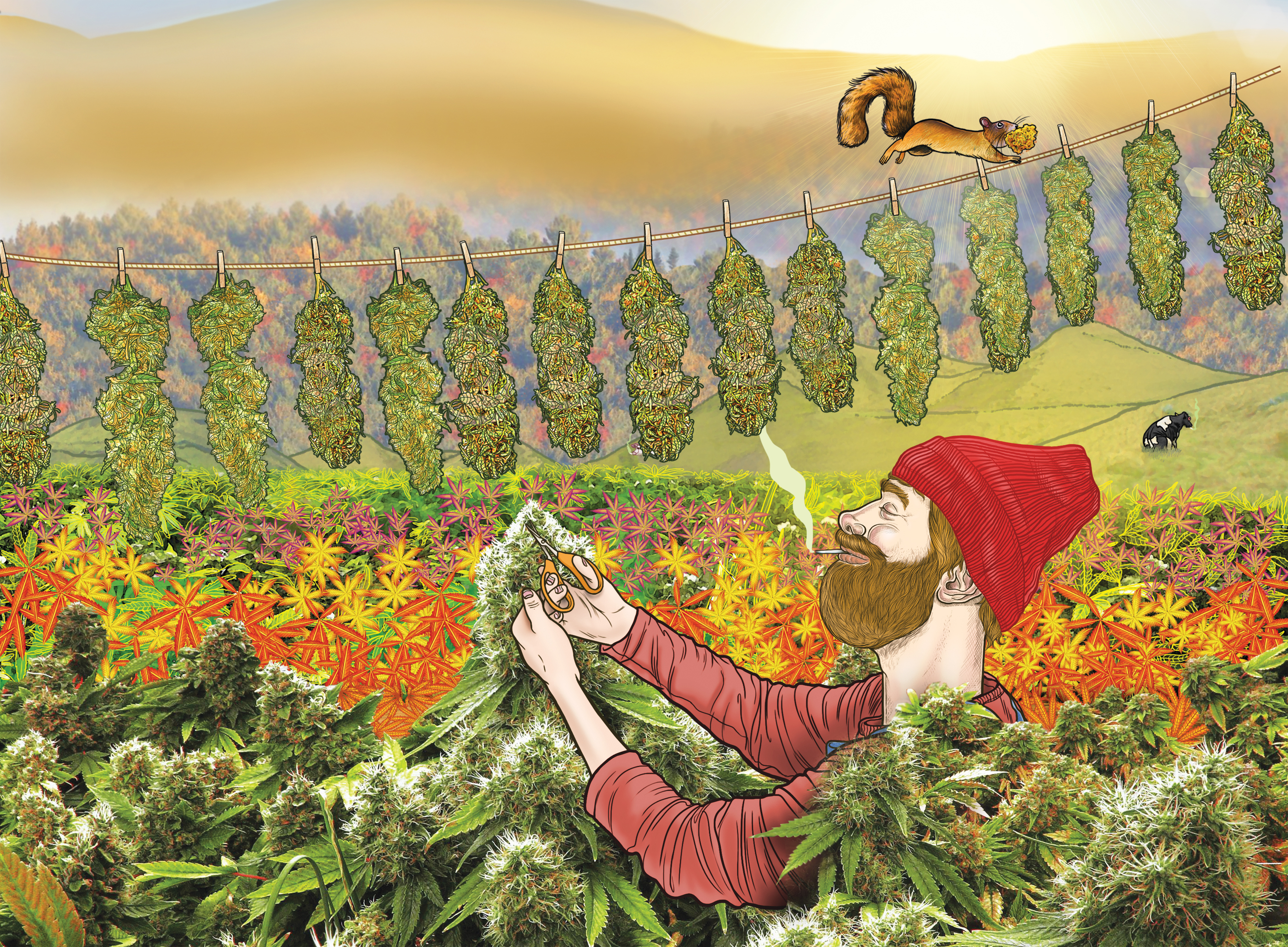 Welcome to the 2016 Harvest Issue