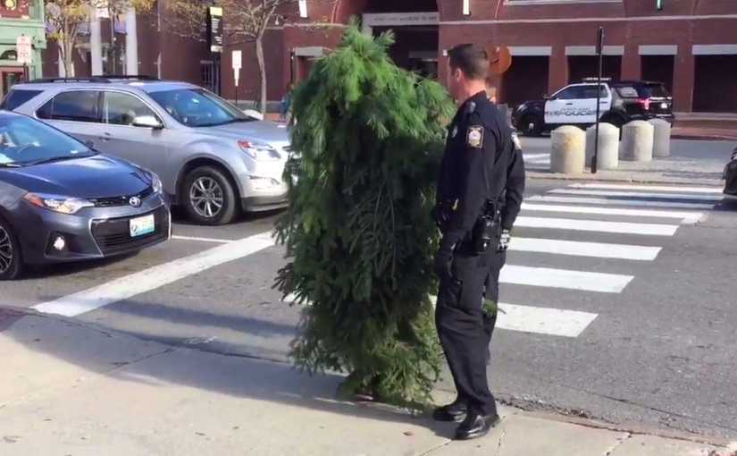 Some Guy in the Other Portland Dressed Up As A Tree and Blocked Traffic