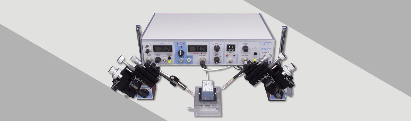 Two Electrode Voltage Clamp Workstation (TEV-700)