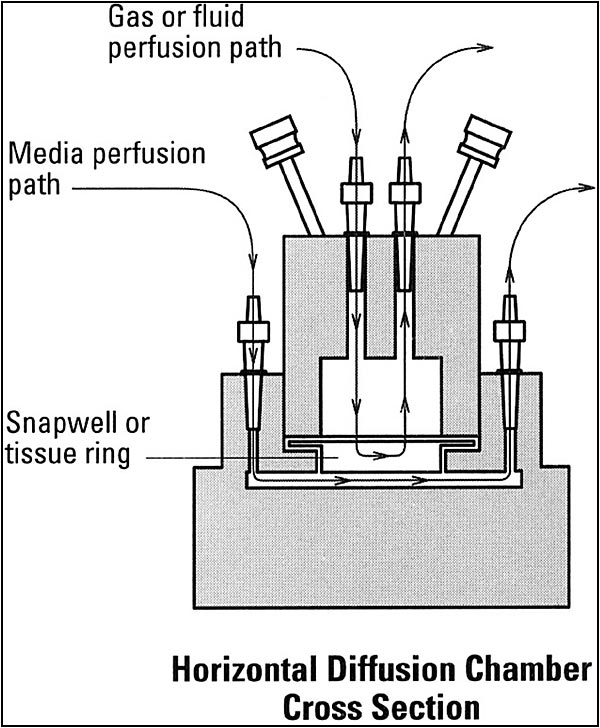 NaviCyte Horizontal Ussing System | Warner Instruments
