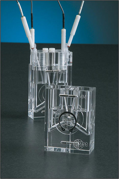 NaviCyte Vertical Ussing System | Warner Instruments