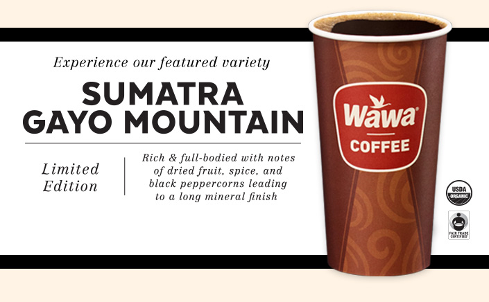 Sumatra Gayo Mountain Coffee - Limited Edition