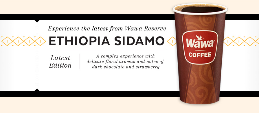 Ethiopia Sidamo Coffee from Wawa Reserve