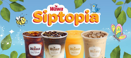 Take me to Siptopia™