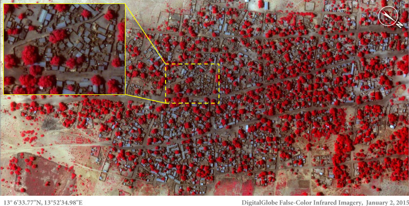 Satellite image of the village of Doro Baga in north-eastern Nigeria taken on 2 Jan 2015. Shows an example of the densely packed structures and tree cover in Doro Baga before the village was razed by Boko Haram. Micah Farfour/DigitalGlobe