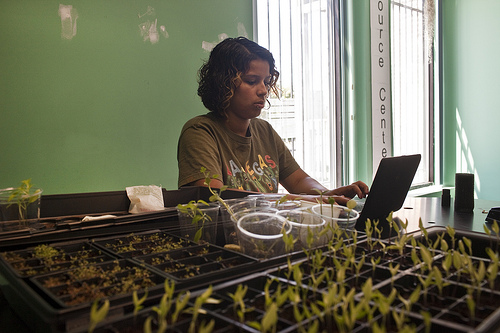 A student at Pedro Albizu Campos High School studies urban agriculture (Flickr/America Redefined)