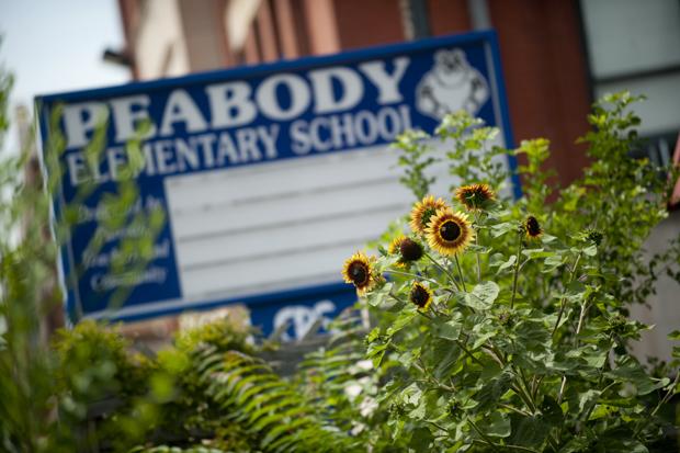 Peabody Elementary (WBEZ/Bill Healy)