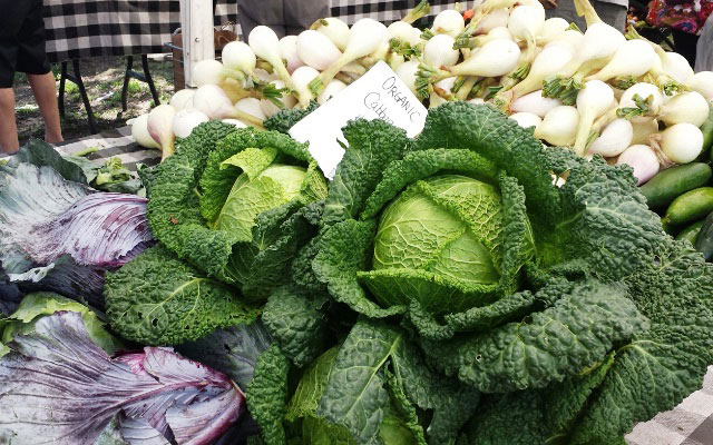 Regular consumption of cruciferous vegetables like cabbage, broccoli and Brussels sprouts can help clear DNA damage from byproducts of grilled meats. (WBEZ/MONICA ENG)