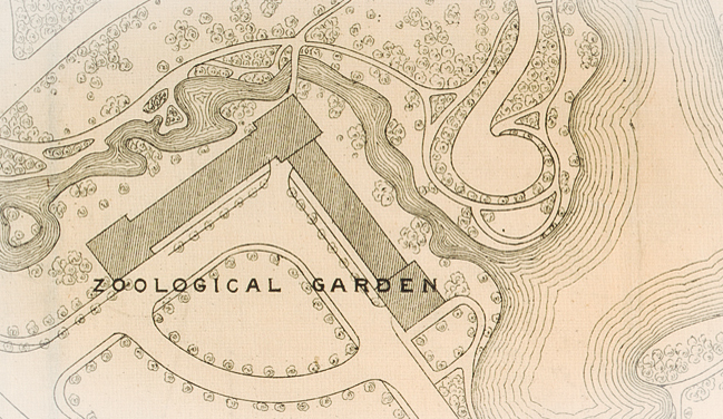 Click to see this design map, which shows that a zoo had also been planned for Chicago's Garfield Park. According to Chicago Park District historian Julia Bachrach, park districts balked at the high cost of operating neighborhood zoos, especially after Lincoln Park Zoo proved so successful. (Courtesy of Chicago History Museum)