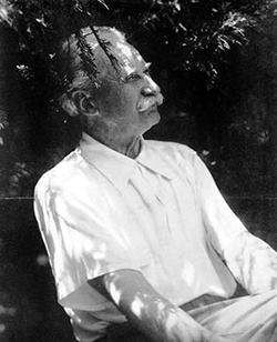 Danish-born Jens Jensen helped develop Chicago's park system. He's also credited with helping preserve much of the Indiana Dunes.  (Photo provided by Carey Lundin)