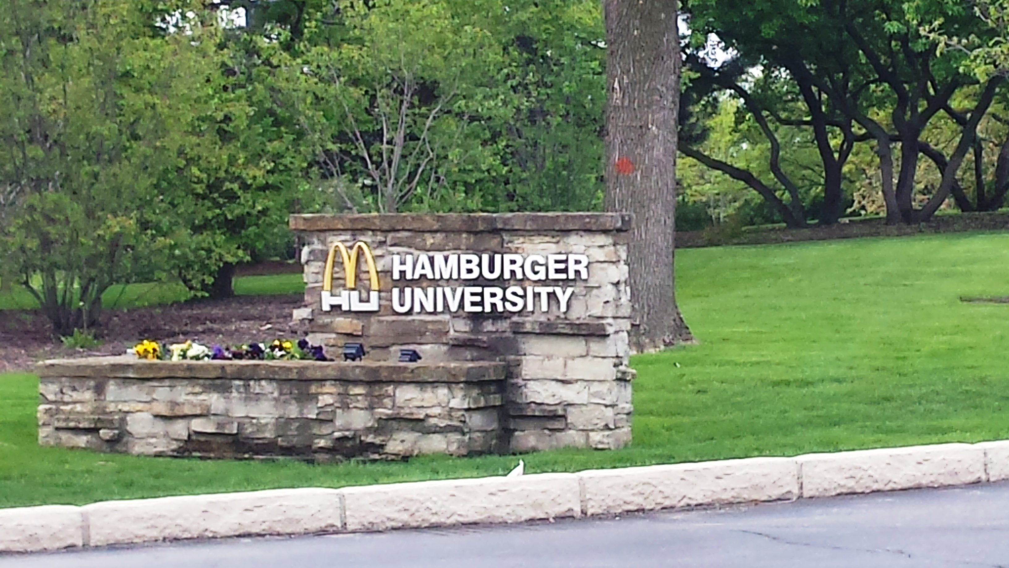 More than 50 teachers unions called on McDonald's Wednesday to stop its McTeacher's Nights. McDonald's corporate office in Oak Brook said it does not manage the controversial McTeacher's Nights fundraisers, but activists believe there is national coordination. (WBEZ/Monica Eng)