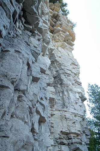 Niagara limestone, the same kind that forms the Chicago River bed, in Peninsula State Park, Wisconsin. (Flickr/Wisconsin Department of Natural Resources)