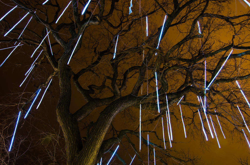 Light Drops: Lincoln Park Zoo's ZooLights. (Flickr/Romeo Banias)
