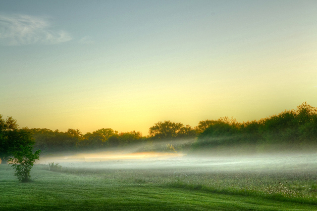Morning fog (Flickr/olsonj)