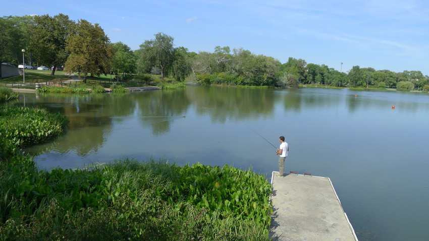 A man fishes in Humboldt Park lagoon in early fall. (WBEZ/Robin Amer)