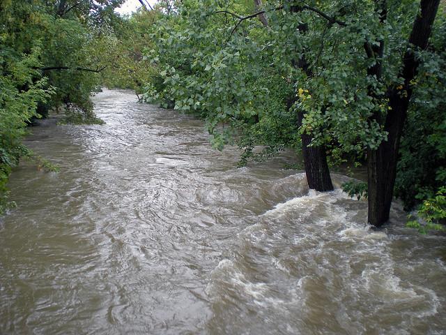A swollen Chicago River runs through Albany Park in 2008. (Dominic Casey via Flickr)