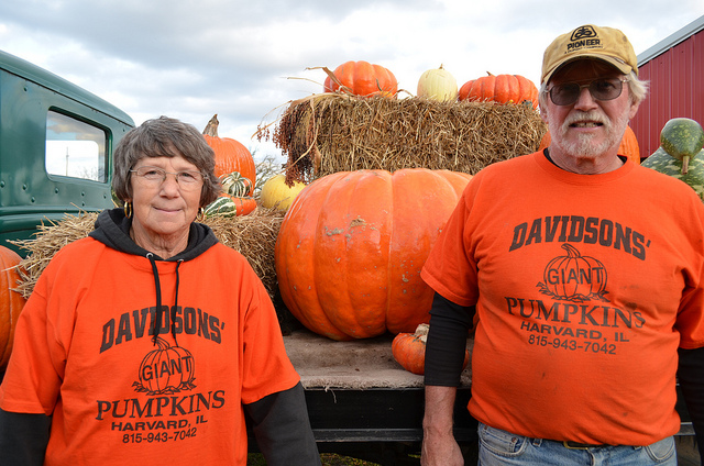 Shirley Moore and Larry Davidson at Davidsons' Giant Pumpkins in Harvard, Illinois (WBEZ/Louisa Chu)