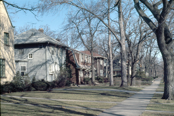 Single-family houses on a residential Beverly street, 1974. (Photo courtesy UIC Digital Collections)