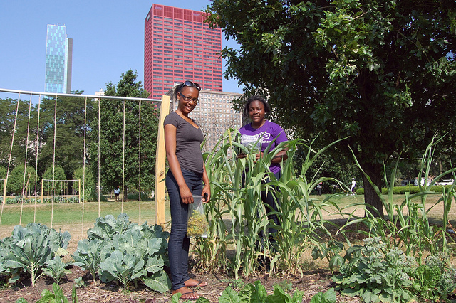 Sisters Dejdrea and Deja Baines with broom corn at Art on the Farm (WBEZ/Louisa Chu)