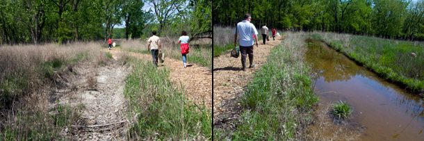 Scars from off-road vehicle traffic, left, make fitting habitat for amphibians after restoration, right. (WBEZ/Chris Bentley)