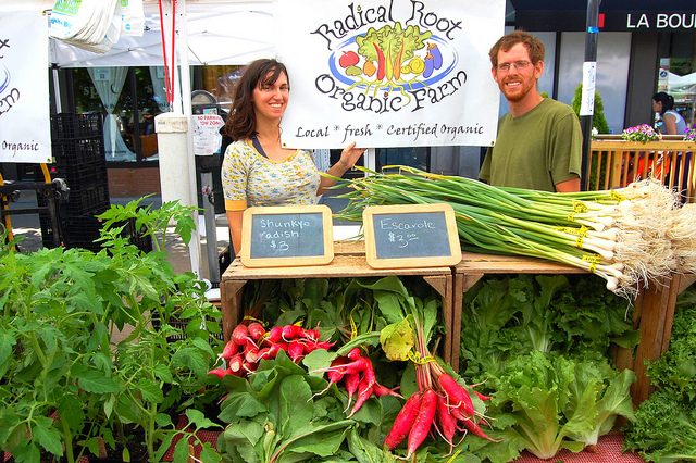 Radical Root Organic Farm stand at Logan Square Farmers Market in Chicago (WBEZ/Louisa Chu)