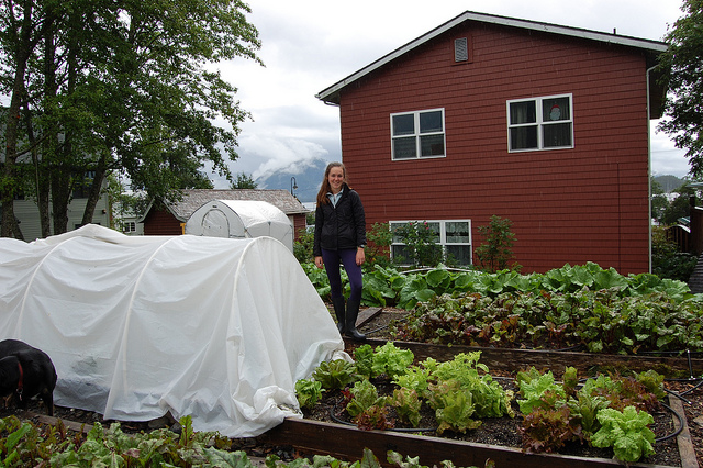 Lettuce warmhouse with intern Christine Devlin (WBEZ/Louisa Chu)