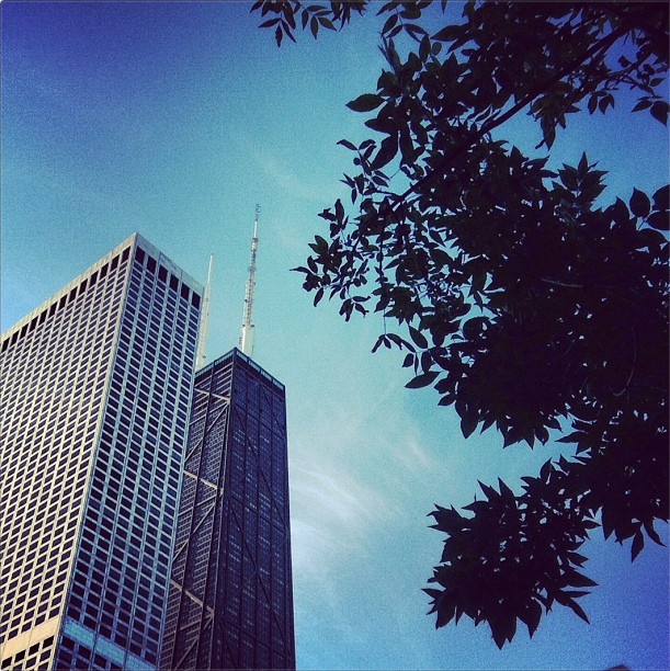 View of the Hancock building from a Streeterville park. (Tricia Bobeda/WBEZ via Instagram)
