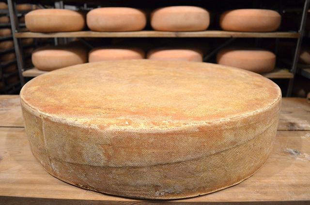 80 pound wheel of Pleasant Ridge Reserve at Uplands Cheese (WBEZ/Louisa Chu)