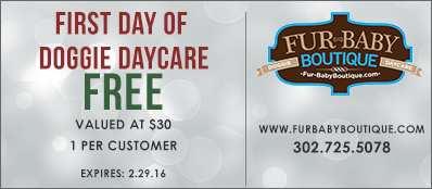 Fur Baby Boutique Coupon: First Day Of Doggie Daycare Free