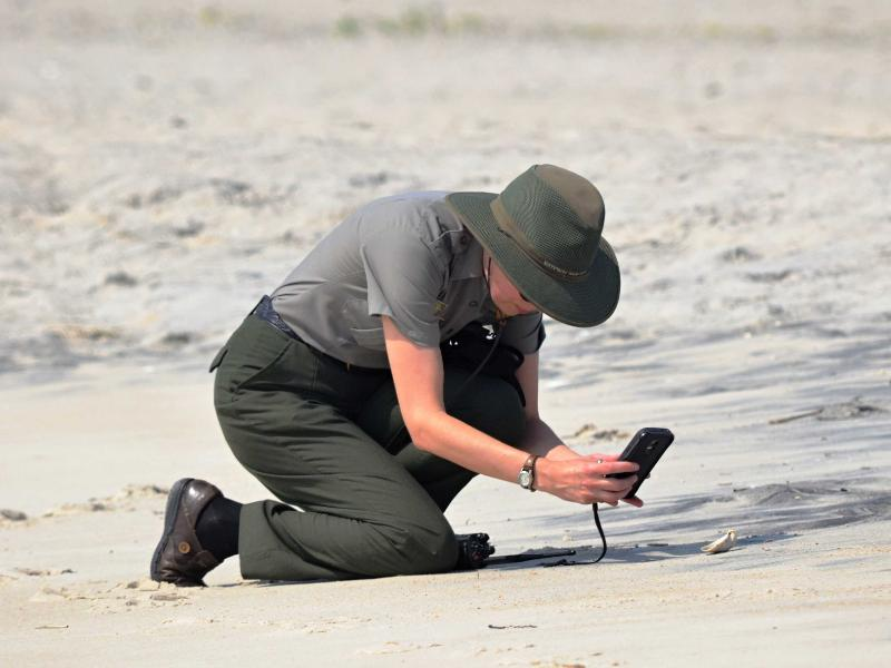 Assateague Island National Seashore 2015, Taylor taking a picture of something for a social media post!
