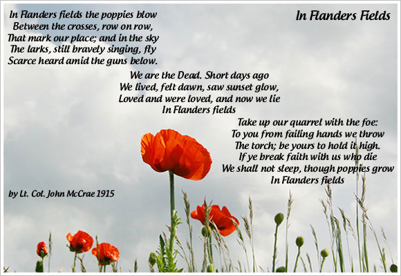 Veterans Day Poppy Flowers Poem Graphic Delmarvalife