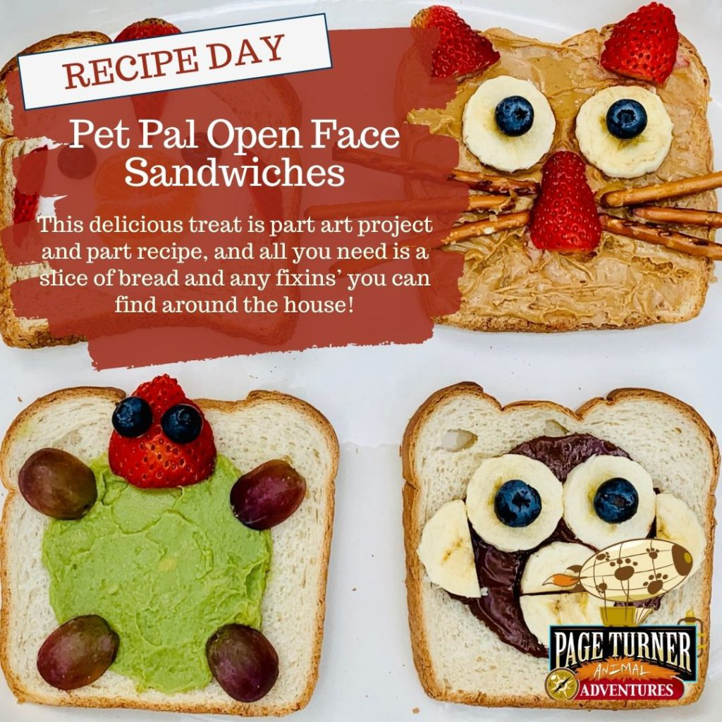 Mashup Day: Pet Pall Open Face Sandwiches