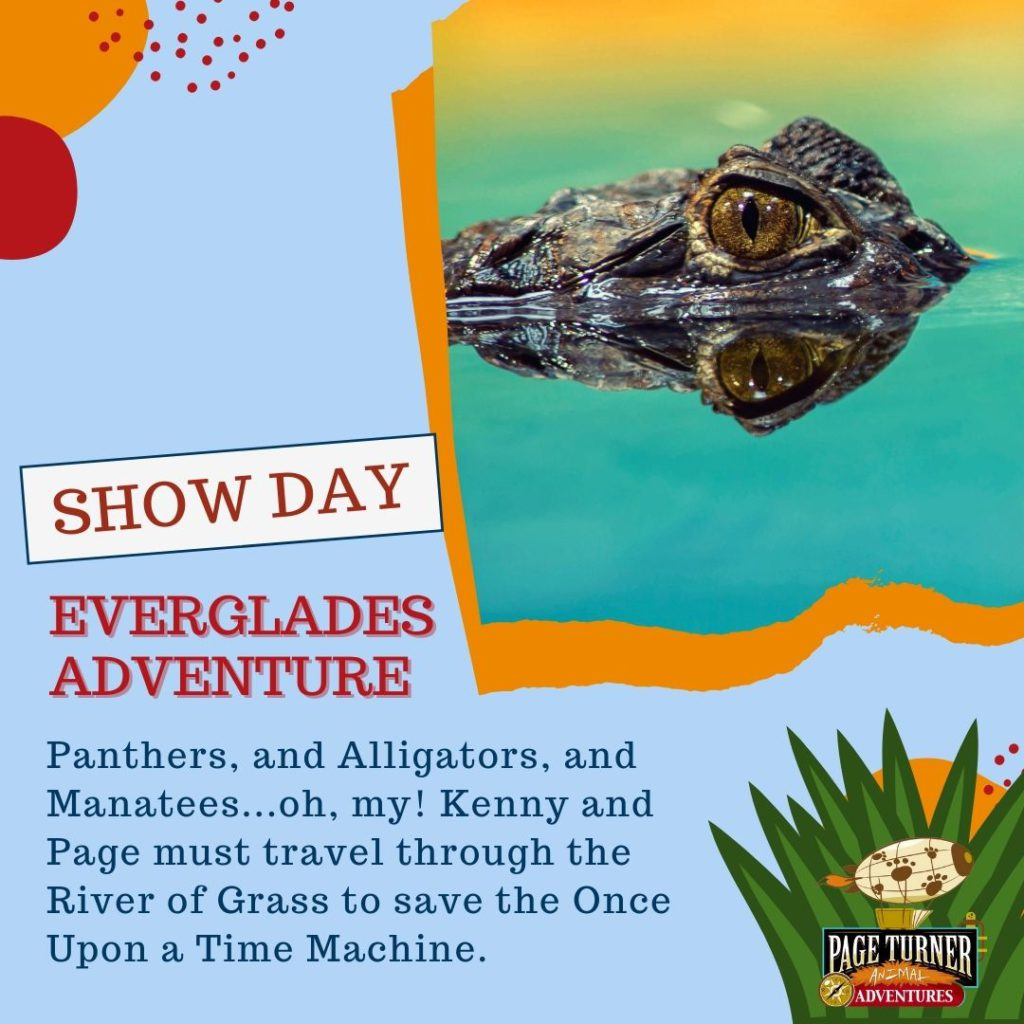 Virtual Show Day – Swamp Stories
