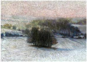 Winter Copse