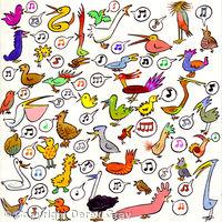40 Birds