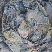 Port Mulgrave fossils