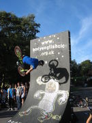 del-vert-wall-flair-2010