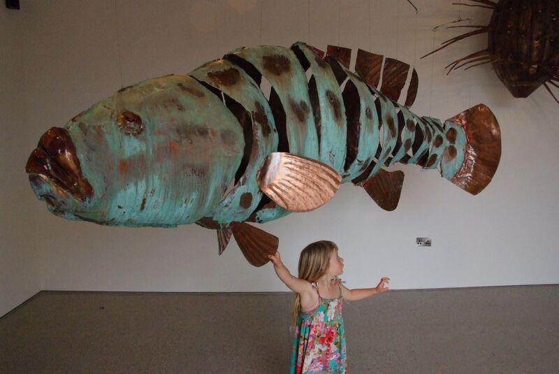 giant potato cod